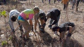 Br. Max Coordinates 2,000+ Tree Planting Project!