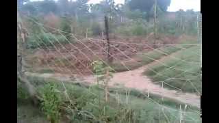 preview picture of video 'Chanaur Village @ Ara @ Bihar'