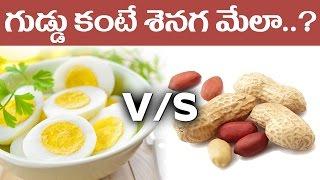 గుడ్డు కంటే శెనగ మేలా ..?    Peanut Better Than Boiled Egg? - Telugu Health Tips