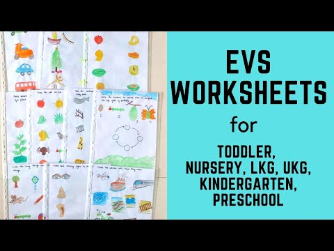 Daily Practice EVS Worksheets for Toddler, Nursery, LKG, UKG, Kindergarten, Preschool | Part-3