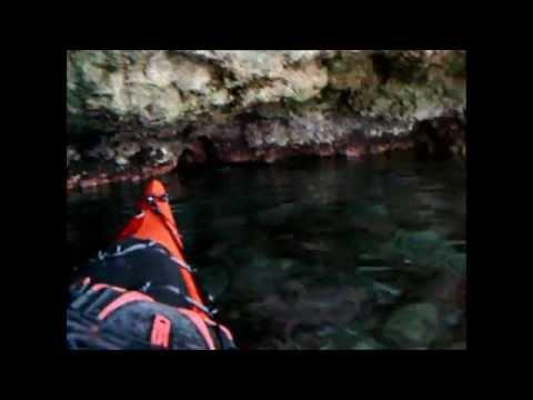 Μία μεσογειακή φώκια στην Ιθάκη [video]