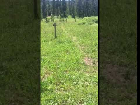 Video Of Backcountry Cascade Lake site 4E4, WY