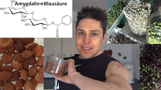 40 bittere Aprikosenkerne essbar! Krebsheilung & Ursachen (Chemo, Zucker, Übersäuerung, Giftstoffe)
