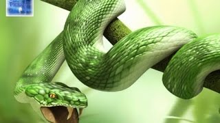 Serpent's Seed in Prophecy - Dave Mathews at The Prophecy Club Radio (1 of 2)