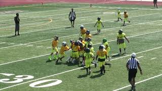 SoCal Elite  game 9u  7-13-19