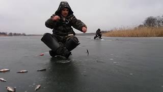 Запрет на рыбалку с эхолотом