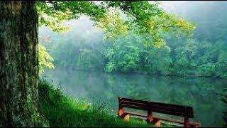 Отпуснете се с природата