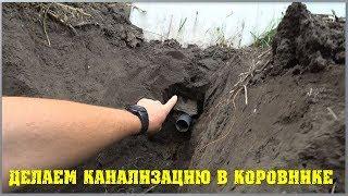 Канализация коровника. Как сделать канализацию в коровнике. / Семья в деревне