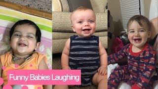faze tari ras de bebelusi