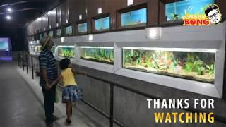 Zoo Aquarium Kolkata | Alipore Zoo Aquarium | Calcutta Zoo Aquarium | Kolkata Tour Guide