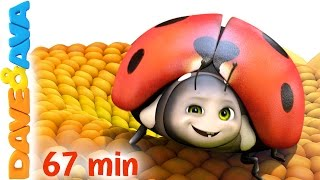 🐞 Five Little Ladybugs | Nursery Rhymes Collection and Kids Songs from Dave and Ava 🐞