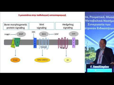 Γ. Σακελλαρίου - Μηχανική φόρτιση, οστεοπαραγωγή και σπονδυλαρθρίτιδες