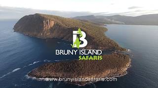 Bruny Island Safaris, Food, Sightseeing & Cape Bruny Lighthouse Tours in Tasmania, departing Hobart