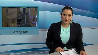 TV Budakalász / Budakalász Ma / 2018.01.26.