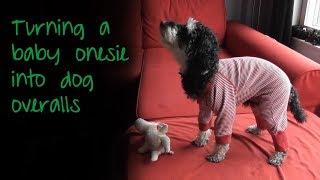 Baby Onesie Into Dog Overalls