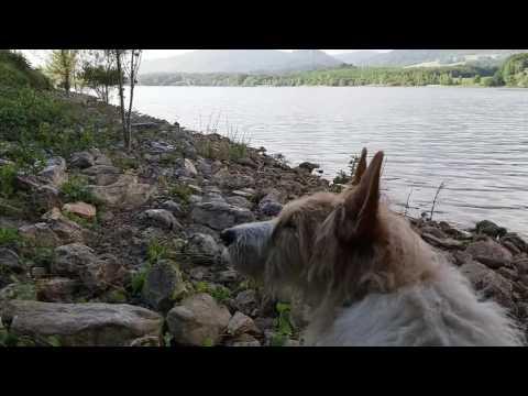 Aviorimessa che pesca in Angarsk