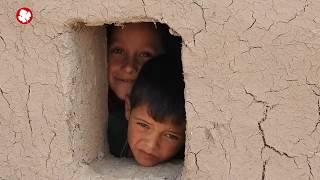 home-Idlib.jpg