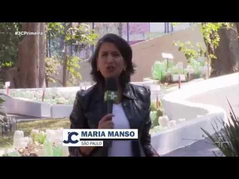 Escola Anitta - SBCampo – TV Cultura 2017