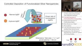 Laser Assisted Nanofabrication of Plasmonic Biomic Functional Surfaces (Anatoliy Pinchuk)