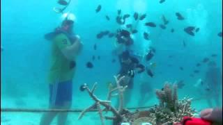 preview picture of video 'Oceanwalker Vanuatu - Vanuatu - The Tour Shop'