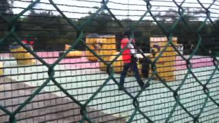 preview picture of video 'Paintball Action War - Cattura la Bandiera 20/05/12'