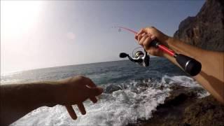 Rockfishing Canarias Pardo