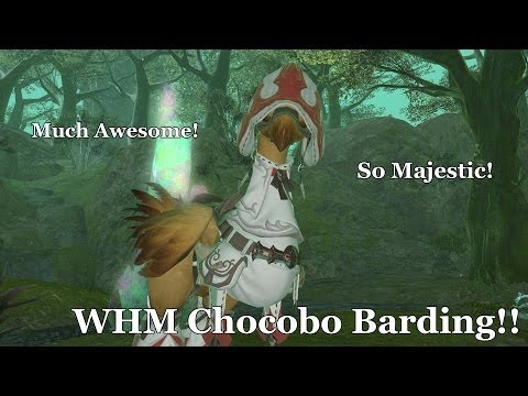 Video Guide: Easiest Way To Level Your FFXIV Chocobo