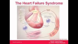 Cardiac Webinar Series: Part 2 – Interventions (November 2012)