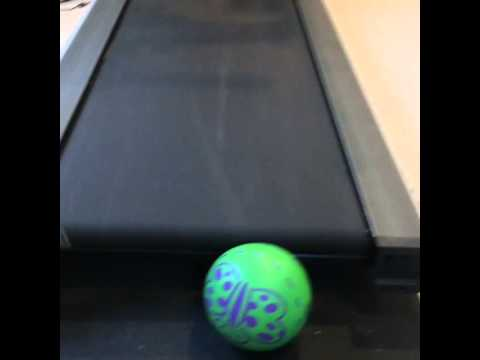 Treadmill & Rubber Ball. 11 seconds of pure brilliance