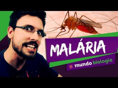 Nemosol parazita kezelés