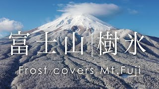 空撮 富士山 樹氷 | Mt. Fuji is covered by frost