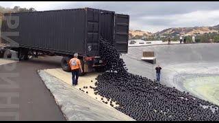 В Калифорнии экономят воду с помощью пластиковых шариков