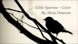 Little Sparrow ~ Cover