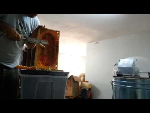 пчеловодство  испытаение электро ножа и качаю мёд