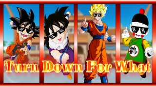Top 5 Mejores Turn Down For What | Dragon Ball Z | Parte 1 |