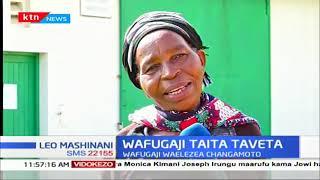 Wafugaji kaunti ya Taita Taveta walalamikia bei duni ya maziwa