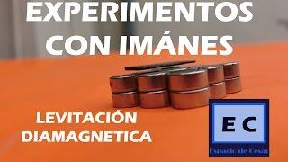 Experimentos con imanes, donde conseguirlos, magnetismo