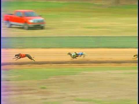 Race 20