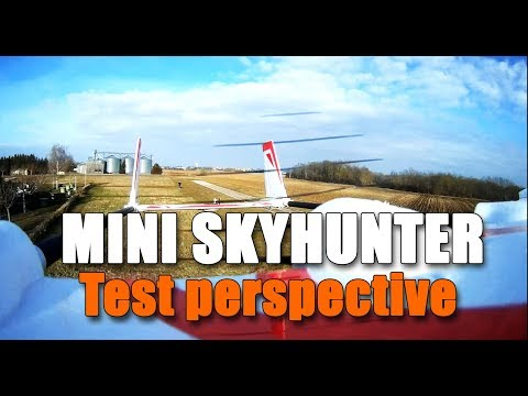 miniskyhunter--fpv-perspective-test