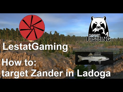 How to target Zander in Ladoga