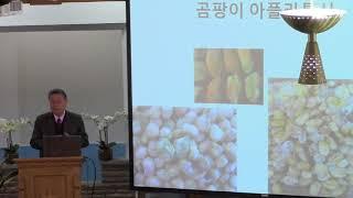 2018-03-18(김평웅)암세포를 억제하는 음식들