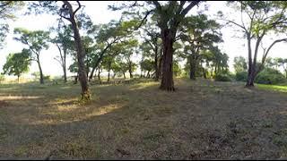 360 Video Zambia Wildlife Film trip  - Photos of Africa VR Safari