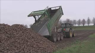 Sugar Beet Harvest At Viderups Gods In Sweden 2018