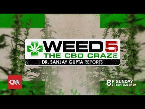 Weed 5: The CBD Craze
