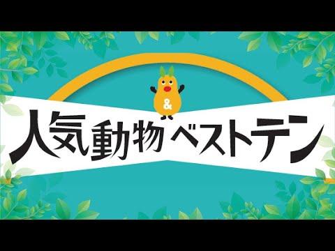 【東山動植物園公式】2020年 第24回人気動物ベストテン