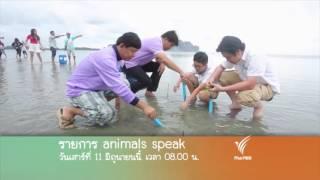 Animals Speak - พะยูน...เงือกน้อยแห่งท้องทะเล ตอน 2