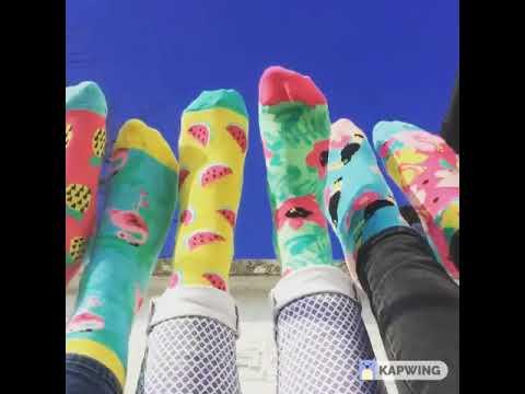 Youtube Video for Tropicool - Six Odd Socks!