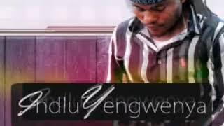 INDLU YENGWENYA ft. IMFEZ'EMNYAMA (ASAMBENI SIYOBABONA)