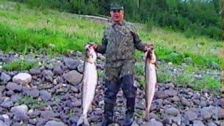 Ловля нельмы на севере енисея