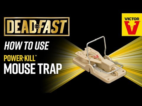 Deadfast Power Kill Mouse Trap Video